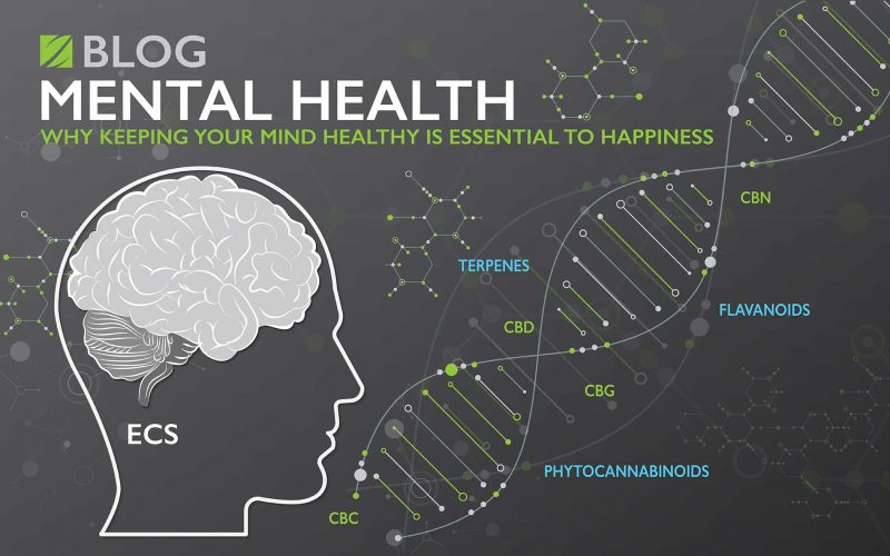 Mental Health:  Why Keeping Your Mind Healthy Is Essential To Happiness